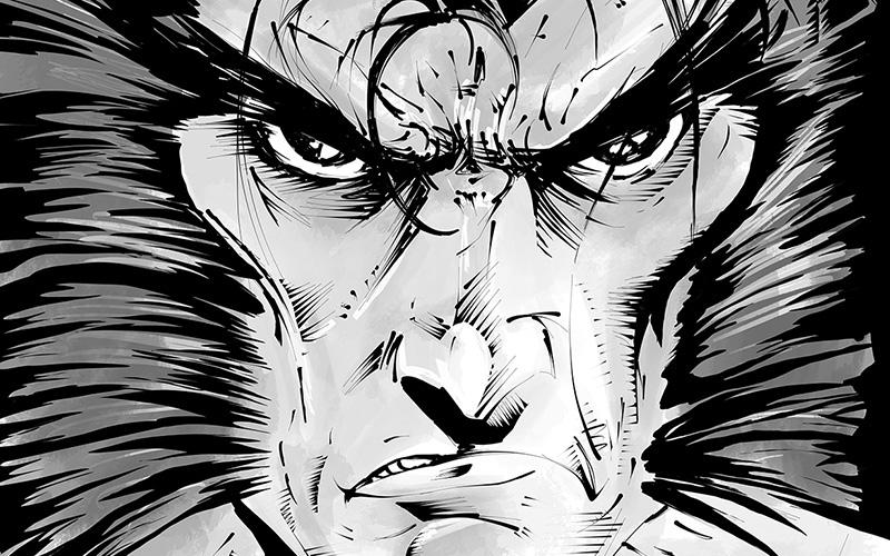 Wolverine: Todd McFarlane Homage